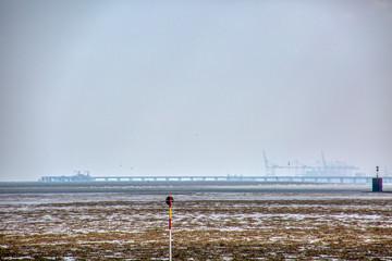Nordsee © Detlev