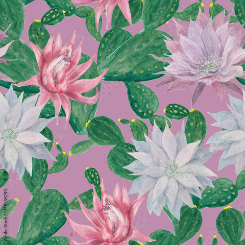 Watercolor painting seamless pattern with cacti flowers - 238536294