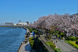 Rivière Sumida, Tokyo, Japon