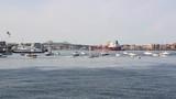 Boston Harbor and Tobin Bridge - 238567204