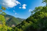 Sguardo verso la natura dal sentiero 201 - 238571685