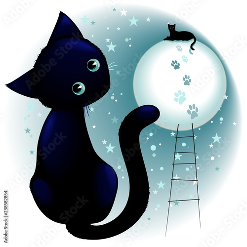 Blue Kitty Dream on the Moon