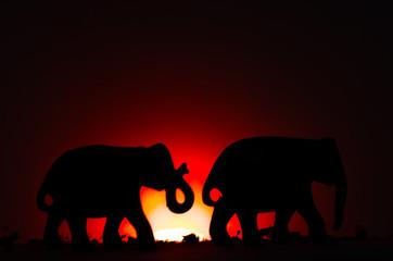 Elephants in sunset  © Dennis