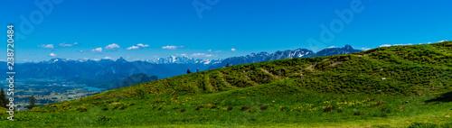 Panorama Berge von Füssen mit Seen Allgäu mit blumenwiese im Vordergrund - 238720484
