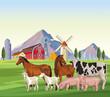farm animals cartoons