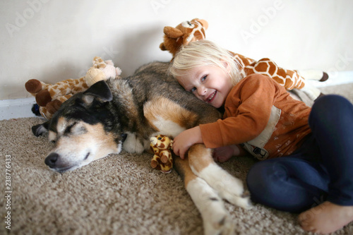 A Young Child is Smiling Happily as she Hugs her Pet German Shepherd Dog and her toy Giraffes. - 238776433