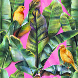 Seamless pattern with banana leaves and yellow birds on a pink background. Tropical background in pop art style for fabrics, wallpapers, textiles. Illustration with colored pencils.
