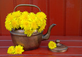 dandelions in a teapot on a brown wooden background