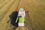 Combine harvesting oats in the field. View from above. - 238801622