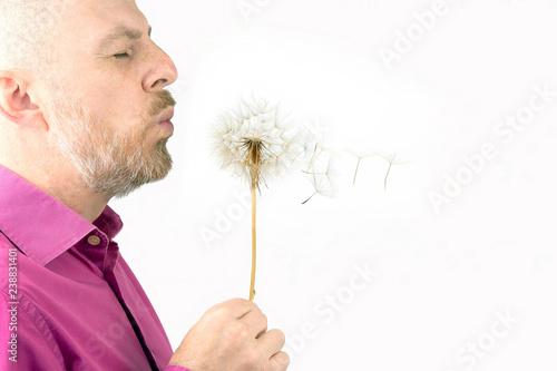 Bearded man blowing on a dandelion flower. Flying dandelion seeds.