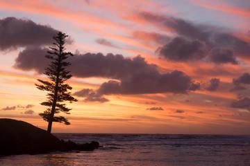 Sunset at Emily Bay - Norfolk Island © Bruce