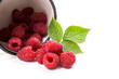 Leinwanddruck Bild - White cup with ripe raspberries and green leaf isolated on white background.