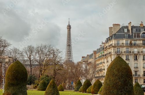 view of the eiffel tower among trees and bushes - 238927215
