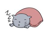 funny sleeping cat illustration