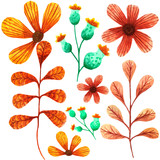 set of flowers and orange leaves painted with watercolor