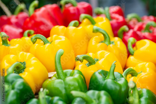 Colorful bell peppers at organic vegetable market - 238992895