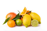 fruit composition with fresh citrus fruits. White background