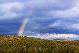 rainbow on gray sky background in mountans © Aleks Kaft