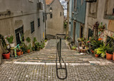 Cobblestone Staircase With Plant Pots, Lisbon, Portugal © robert