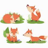 Set of cute fox cartoon character illustration