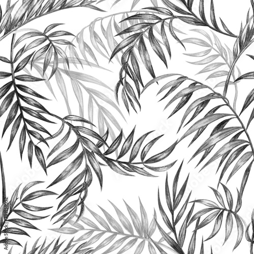 Seamless black and white pattern of palm leaves, tropical background, hand drawing © Ollga P