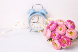 Background with  pink ranunculus flowers and blue alarm clock  on white textured background.