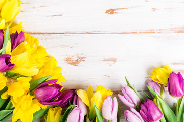 Beautiful Bunch of Tulips and yellow Daffodils on the Pink Background
