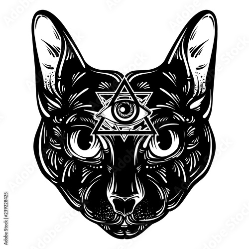3d42fad2ef683 Vector hand drawn ilustration of cat. Character design. All seeing eye  pyramid symbol.