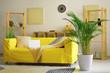 Leinwanddruck Bild - Decorative Areca palm in interior of room