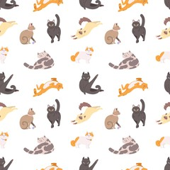 Seamless pattern with purebred cats sleeping, walking, washing, stretching itself on white background. Backdrop with adorable pets. Flat cartoon vector illustration for wallpaper, textile print.