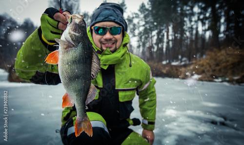 Leinwanddruck Bild Trophy perch. Ice fishing background.