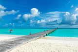 tropical Maldives island with white sandy beach and sea - 239403889