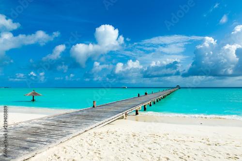 tropical Maldives island with white sandy beach and sea - 239403889