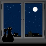 Two cats sit on the windowsill and look at the night city.