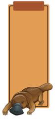 A platypus on blank template © blueringmedia