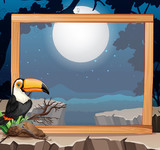 Toucan on wooden frame nature background - 239423009