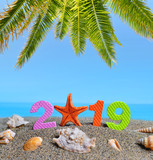 Number 2019  and sea shell on the sand beach. Happy New Year and  summer holiday concept. - 239484291