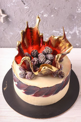 Chocolate cake with berries.Delicious ice cream cake with frozen berries , selective focus