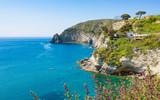 Green rocky coast near small village Sant'Angelo on Ischia island, Italy
