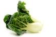 Milk cabbage bok choy