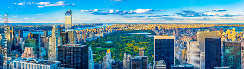 New York City skyline and iconic buildings, United States of America