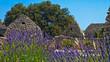 Leinwanddruck Bild - Bories Provence Suedfrankreich