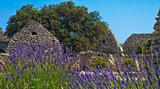 Bories Provence Suedfrankreich