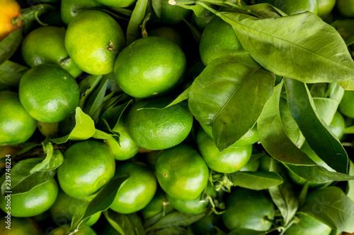 obraz lub plakat Green Mandarins. Unripe green oranges