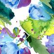 Blue Poppy. Floral botanical flower. Seamless background pattern. Fabric wallpaper print texture.