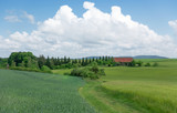 Ländliche Landschaft mit Wiesenweg zwischen grünen Getreidefeldern © Robert Schneider