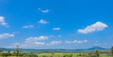 landscape of Savanna Forest and mountain with a blue sky and white clouds in the spring afternoon © sirastock