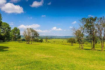 landscape of Savanna Forest and mountain with a blue sky and white clouds in the spring afternoon