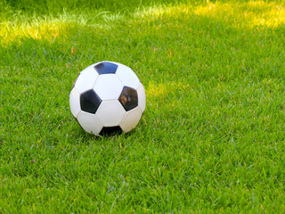 soccer ball lies on the green grass of the lawn