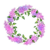wreath of wild flowers isolated on white
